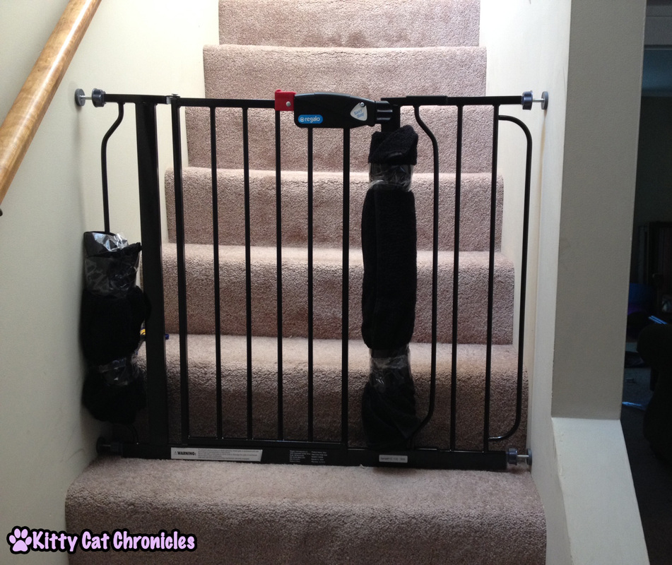 3 Ways to Make Life Easier for a CH Kitty - Baby Gate