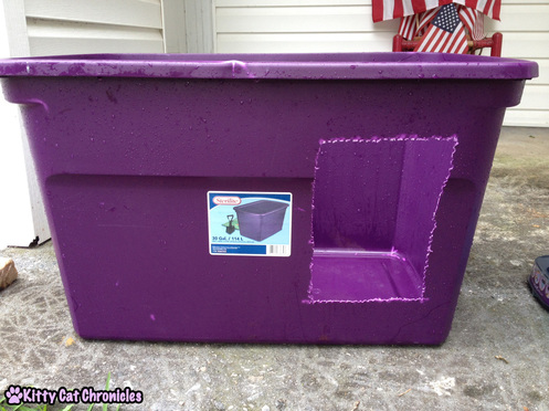 3 Ways to Make Life Easier for a CH Kitty - Homemade Litter Box