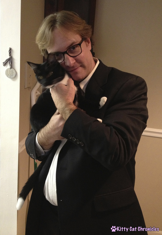 Stylish Cats - Adopt a Shelter Cat