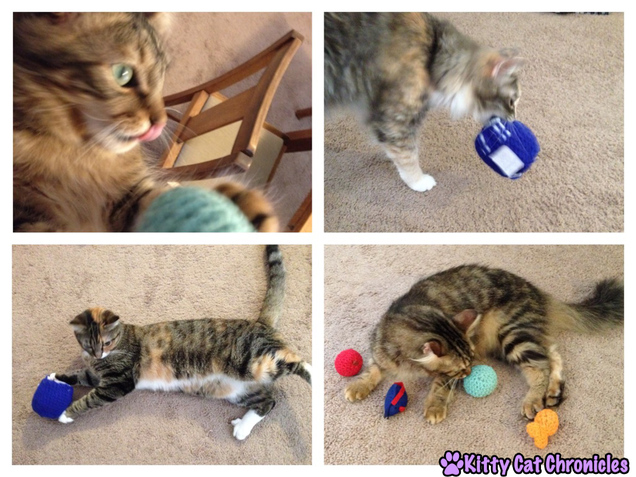 Cats playing with Crochet Toys