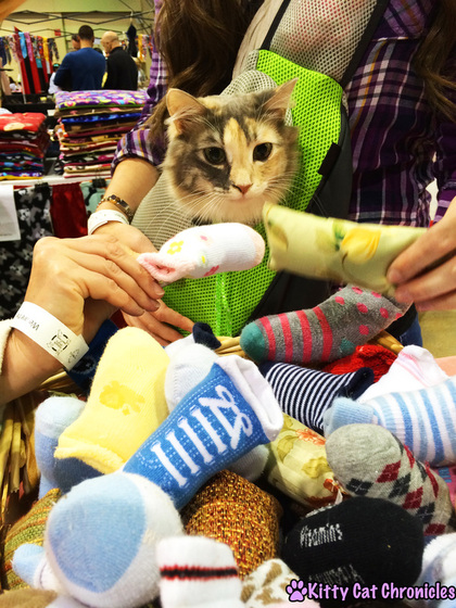 Sophie Goes to the Atlanta Pet Expo!