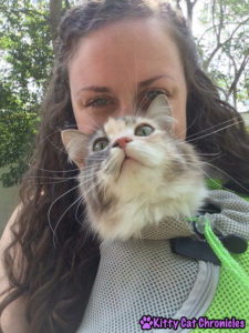 Sophie in her Wacky Paws Pet Sling
