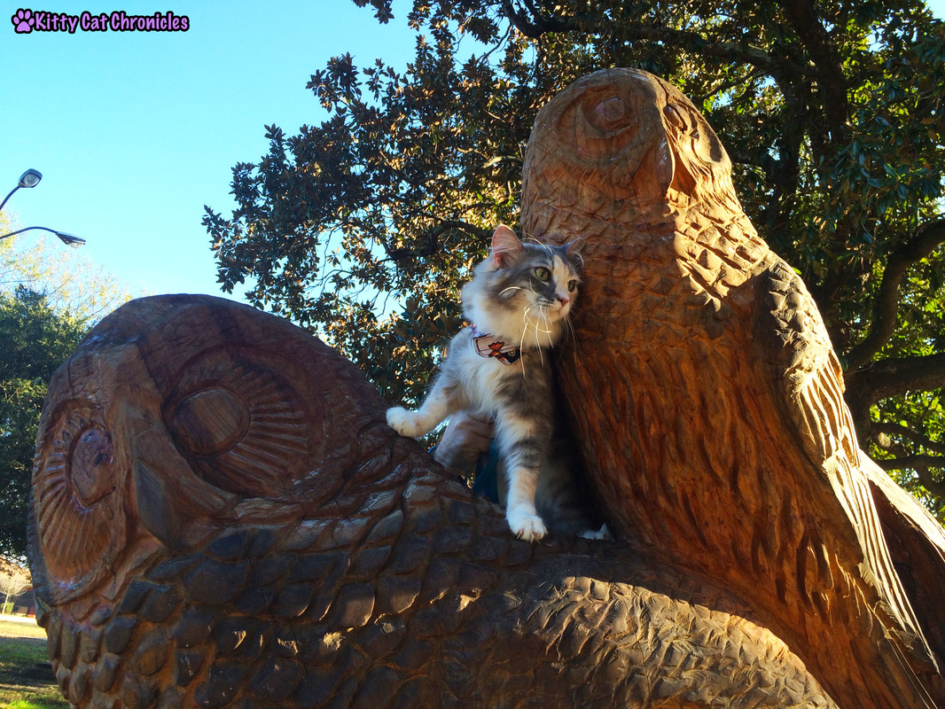 Wordless on #WobblyWednesday: A Day in the Park with Sophie & Lucy - Sophie Climbing Owls