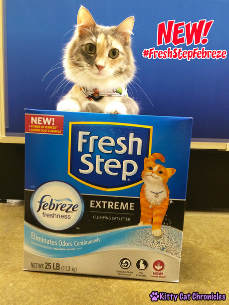 The KCC Cat Litter Check List | Fresh Step with the Power of Febreze