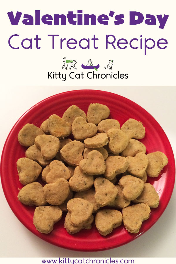 Homemade Valentine's Day Cat Treat Recipe