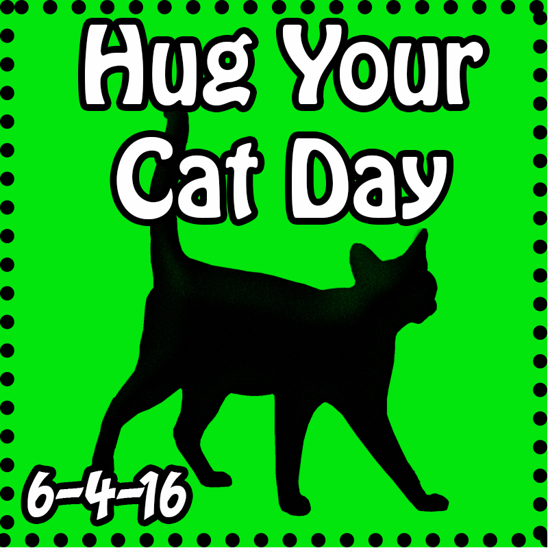 Hug Your Cat Day 2016