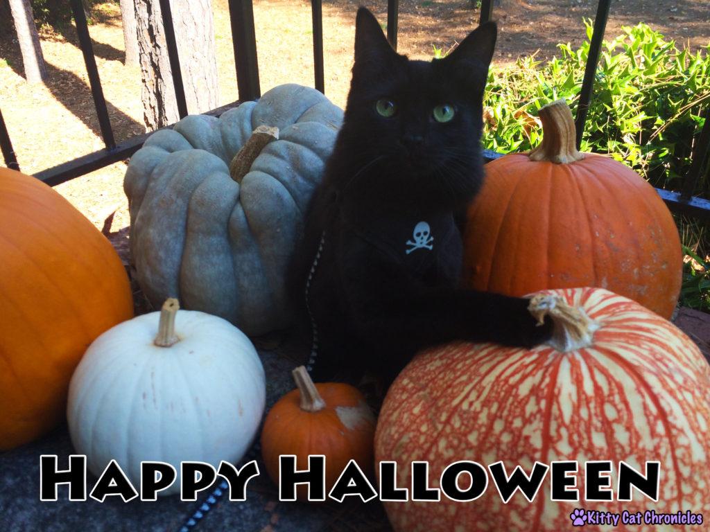 Happy Halloween - Kylo Ren