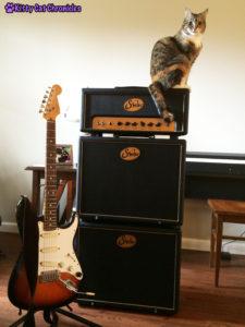 Delilah - Guitar Master