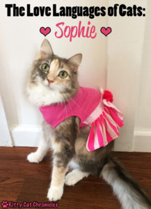 The Love Languages of Cats: Sophie