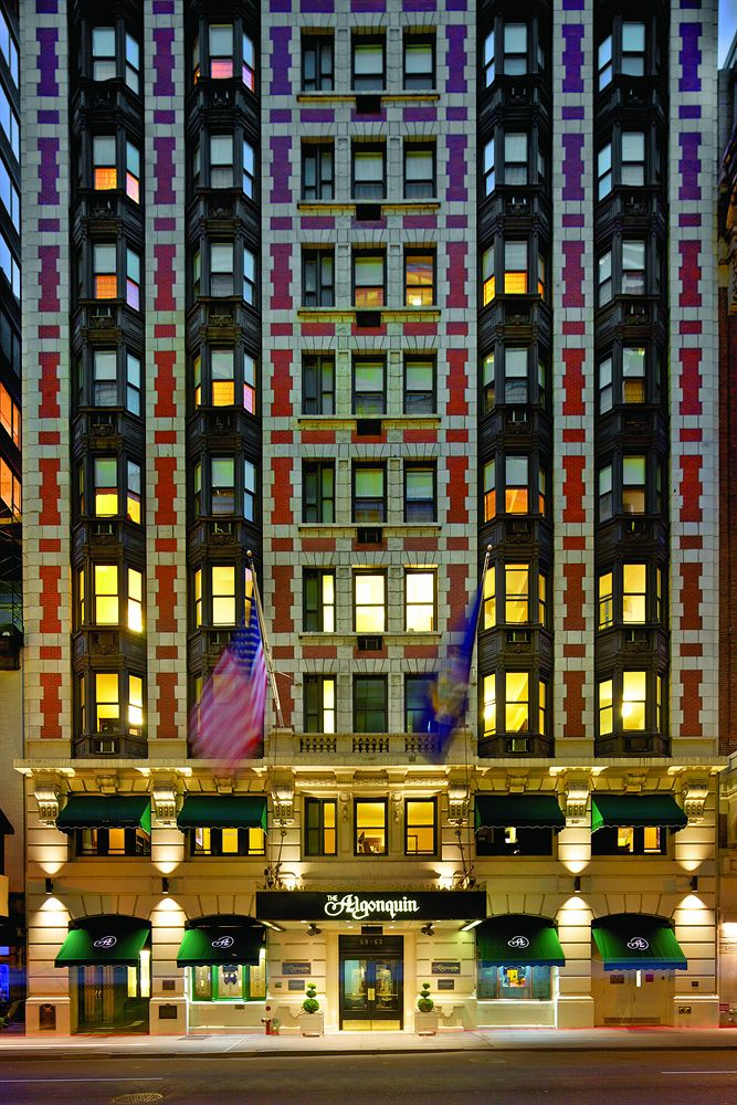 Best Cities for Cat Lovers & Adventure Cats: The Alongquin Hotel, New York City