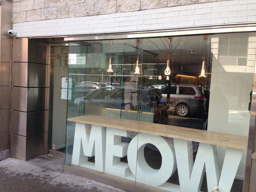 Best Cities for Cat Lovers & Adventure Cats: Meow Parlour, NYC