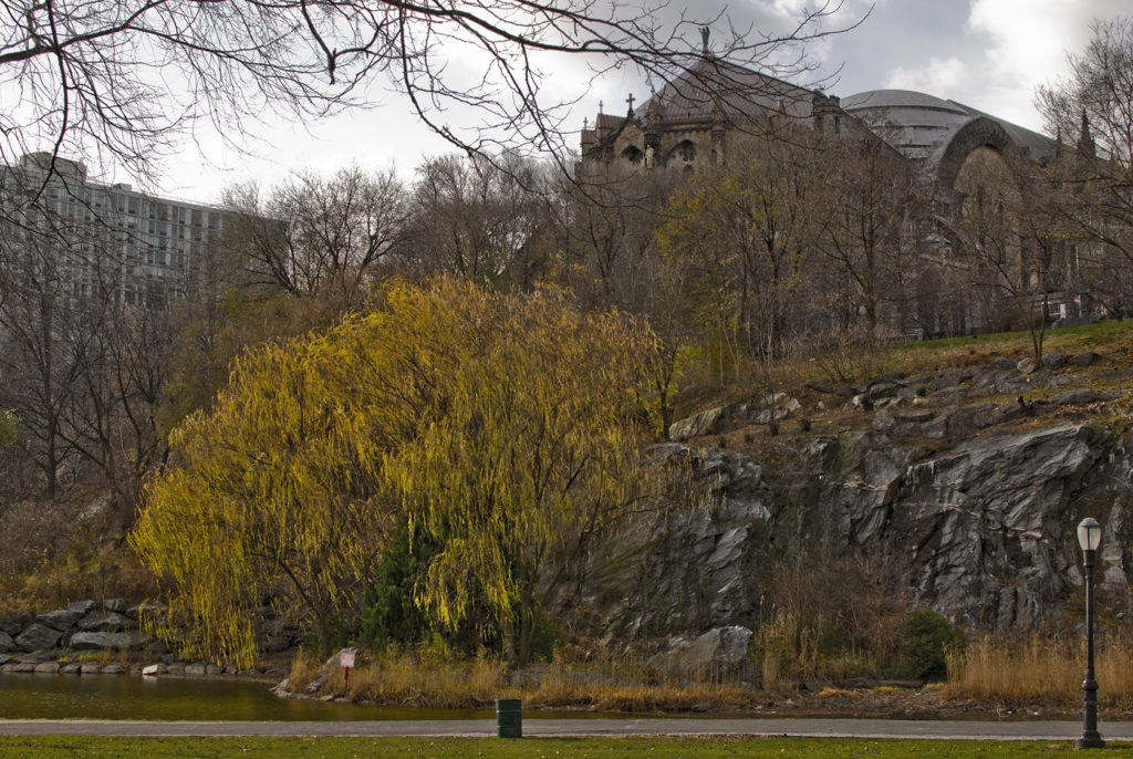 Best Cities for Cat Lovers & Adventure Cats: Morningside Park, New York City