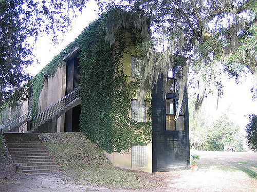 Best Cities for Cat Lover & Adventure Cats: Charleston, SC - The Inn at Middleton Place