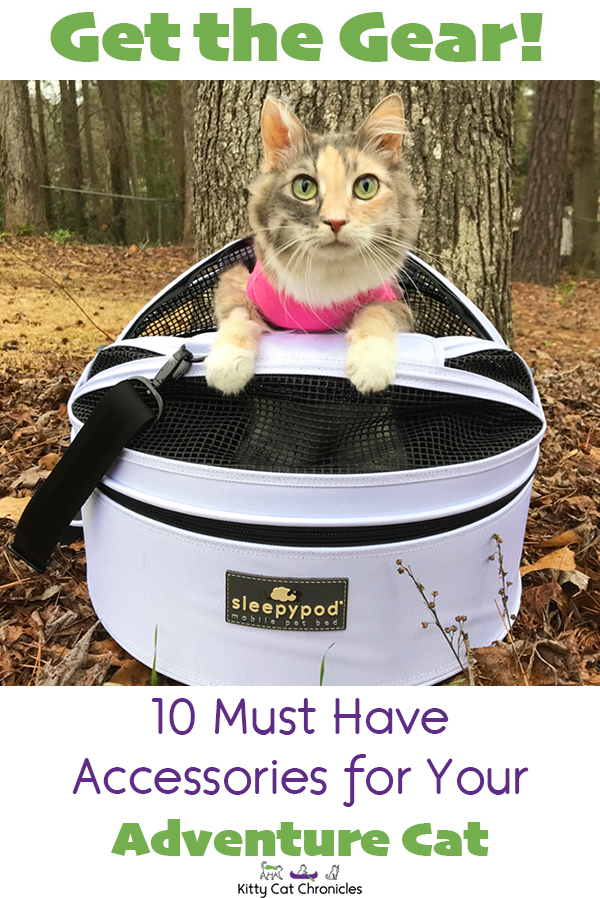 Get the Gear: 10 Must Have Accessories for Your Adventure Cat - cat in Sleepypod