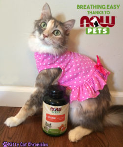 Sophie - Breathing Easy with NOW Pets Supplements