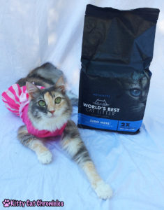 """Say """"Goodbye"""" to Mess and """"Hello"""" to World's Best Cat Litter - Sophie"""