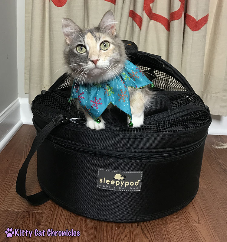 The 2017 KCC Adventure Cat Holiday Gift Guide - Sleepypod Mobile Pet Bed