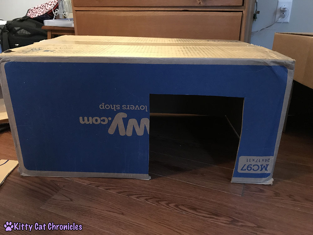 How to Make a Cardboard Box Fort for Your Cat! - boxes