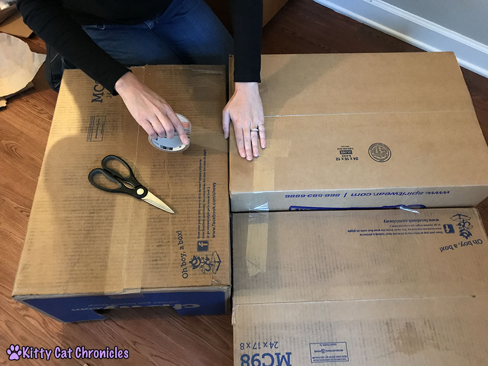 Steps to building a cardboard cat castle