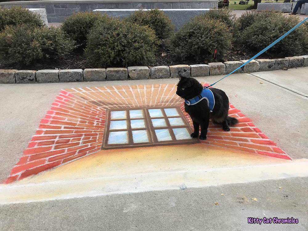 An Afternoon of Art and Reflection with Kylo Ren - Window chalk art