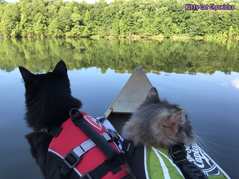 The KCC Adventure Team Canoes Lake Juliette