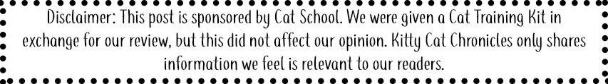 Cat School sponsorship bar