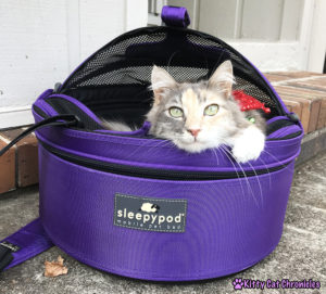 The 2018 KCC Holiday Gift Guide for Adventure Cats - Sleepypod