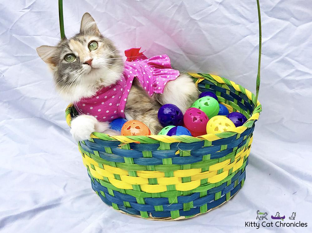 KCC Easter Egg Hunt