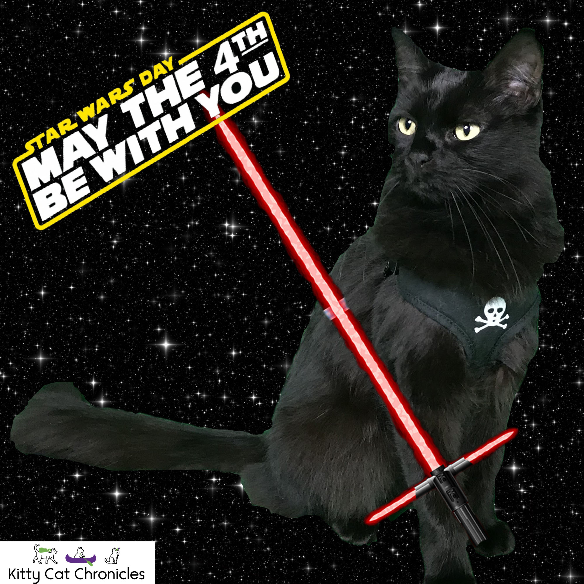 Kylo Ren - May the 4th Be With You - Star Wars Cat