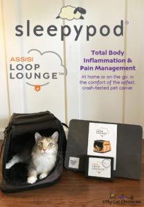 Sleepypod Assisi Loop Lounge - cat in Sleepypod Air with Assisi Loop