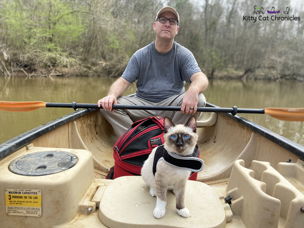 Our Athens Getaway - cat on a canoe