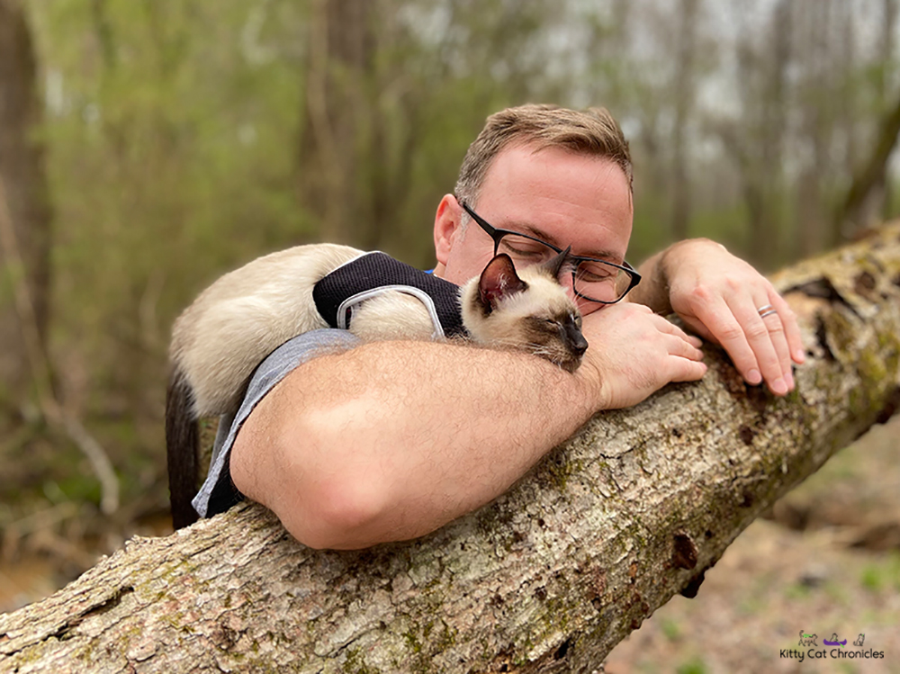 cat and man napping on a log