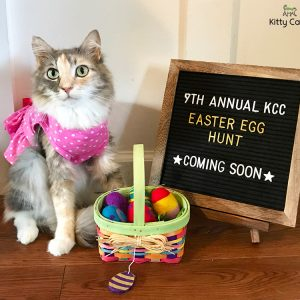 The 9th Annual KCC Easter Egg Hunt: Coming Soon