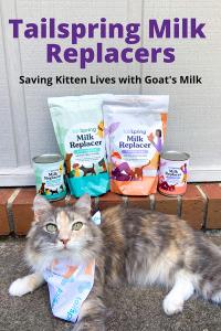 Tailspring Milk Replacers - Goat's Milk Saving Kitten Lives