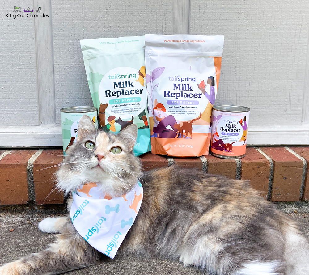 Sophie cat posing with Tailspring Milk Replacer Products
